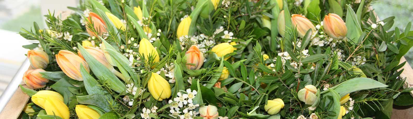 Tulpen_slider